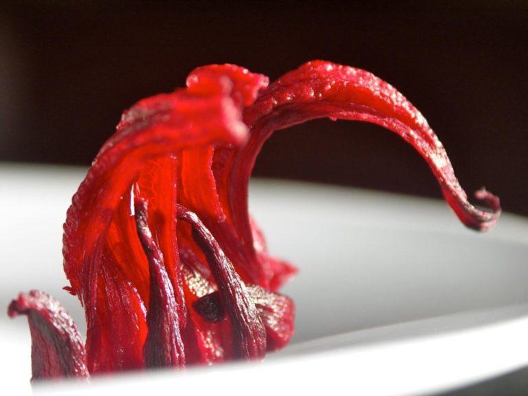 fleur d'hibiscus pour infusion